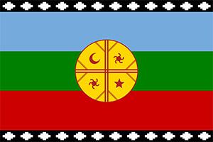 Mapuches-flag